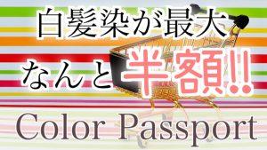お得な回数券カラーパスポート